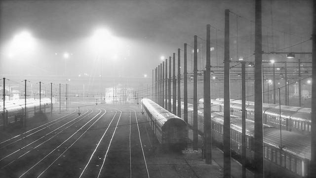 Brouillard sur les Trains