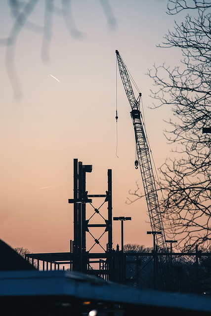 Crane of Tennessee