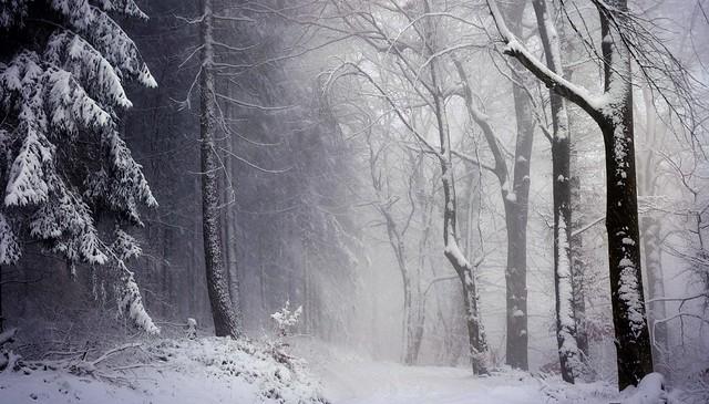 WinterAtmosphere