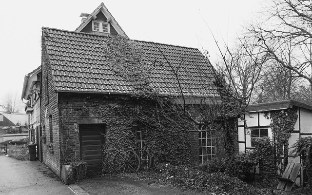 Alter Kotten / Old cottage