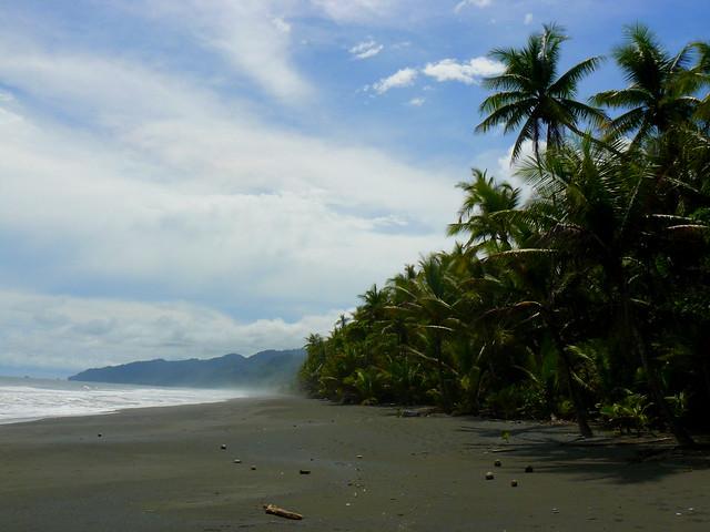 Playa de Carate en Costa Rica (¿Qué ver y hacer en Costa Rica en dos semanas?)