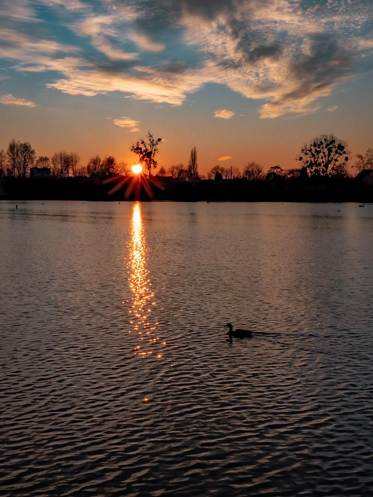 Encore dans ce soir d'hiver sur l'étang... 50834649998_f066128aca_b