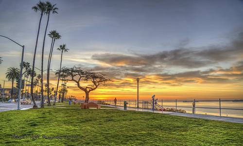 bluffpark longbeach sunrise california southerncalifornia