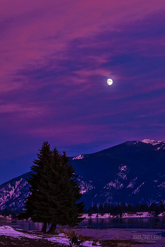 beautiful black blue brown clouds cold colorful dark evening magenta montana moon nature pink plants purple river snow sunset thompsonfalls trees twilight vertical white winter