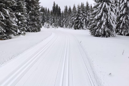 Aktuálně: Pohádková zima je tu, na běžky se dá vyrazit téměř kdekoli a kamkoli