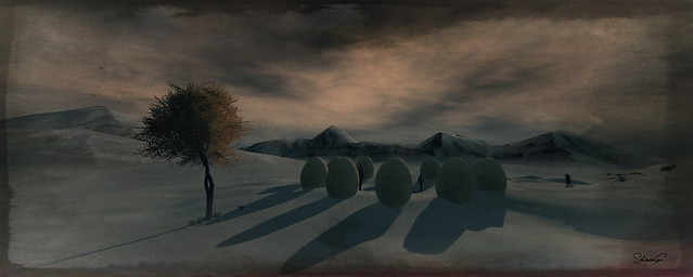 Zamonia The Valley of the Pondering Eggs