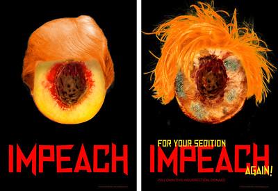 Impeach/Impeach Again Diptych