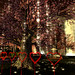 Intimate Romance Gardens 2021 -Sakura Hearts