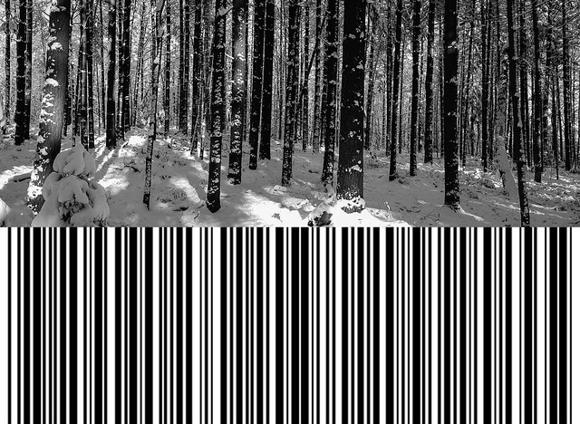 Code39 - the encrypted forest