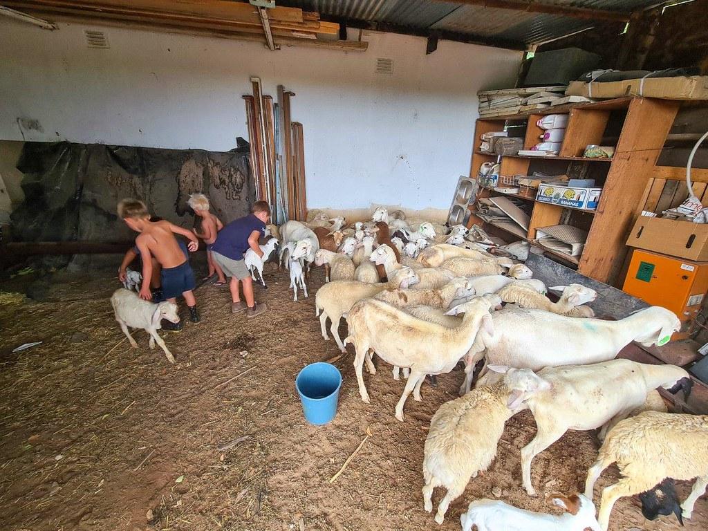 Visiting friends at their family farm, Nungubais, near Outjo