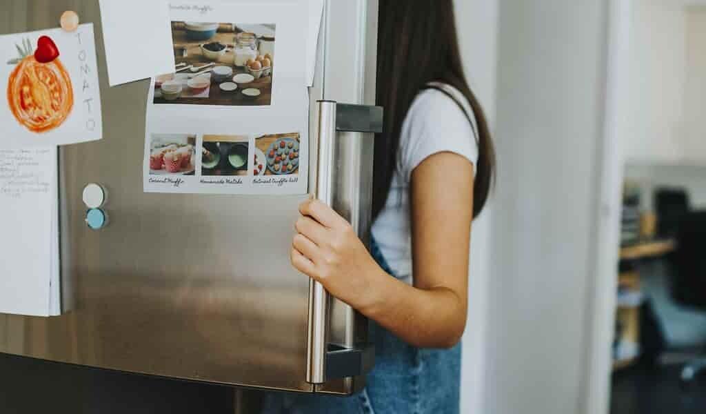 le-rôle-des-microbes-intestinaux-dans-anorexie
