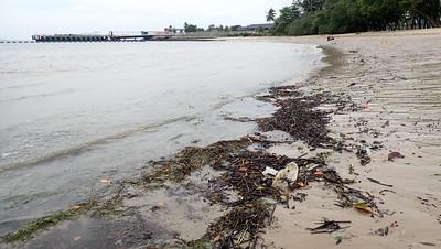 Flotsam washed up on Changi Carpark 7, Jan 2021