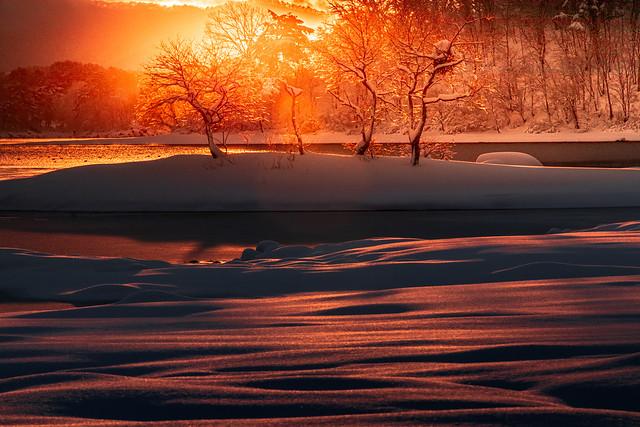 Snow crest in the morning sun (Lake Hibara / Kitashiobara Village) Fukushima