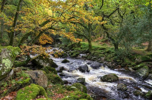 The River Plym on Dartmoor