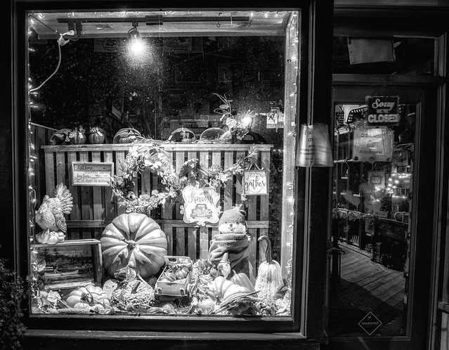 Through the Window: 2020 Thanksgiving Display