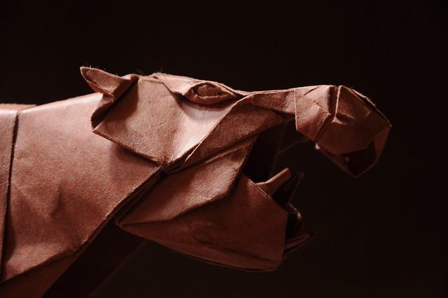 Hippopotamus - Yoo Tae Yong - 50x50cm