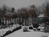 Palau d'hivern