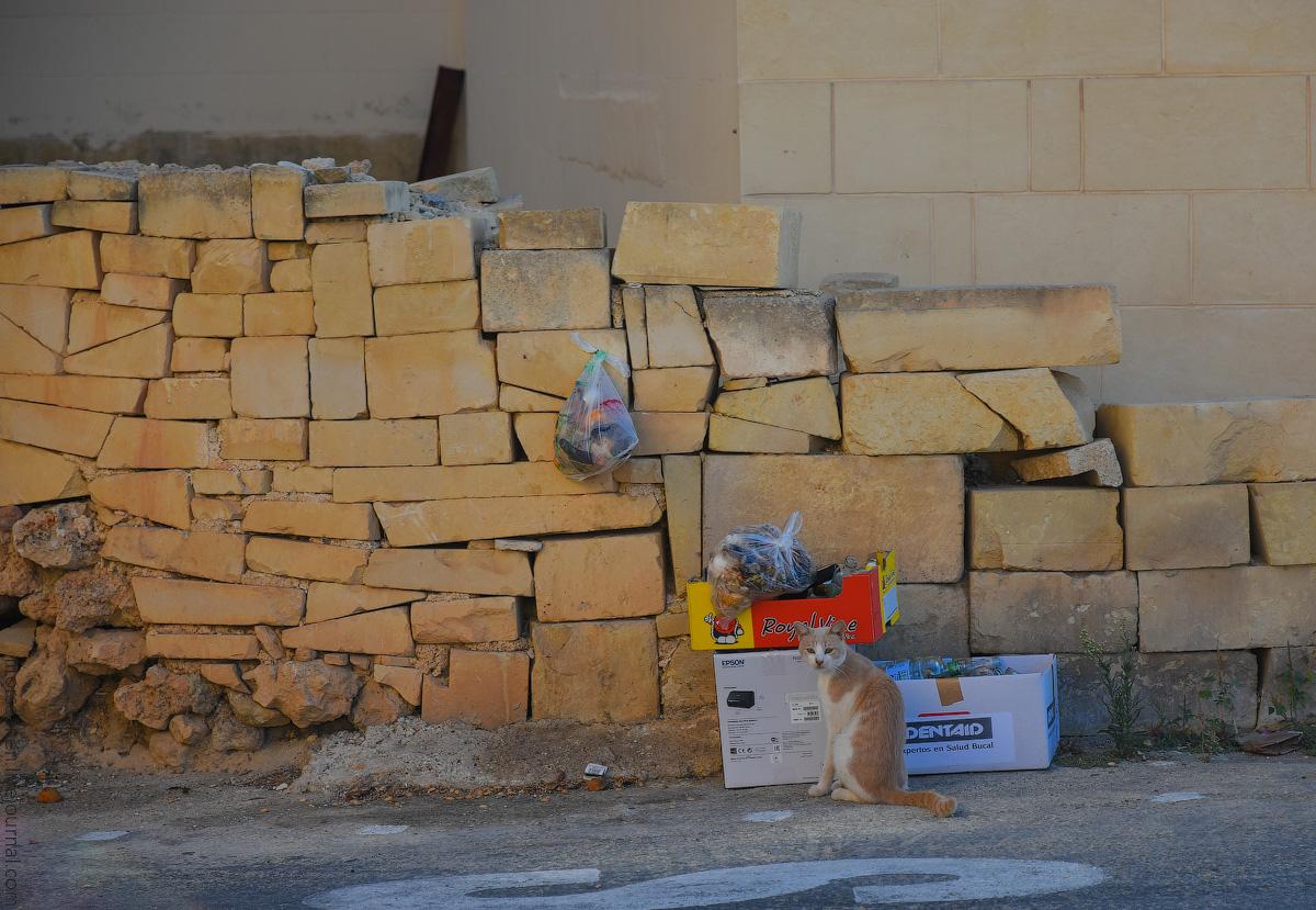 Malta-details-(37)