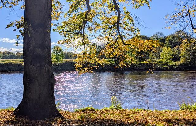 The river at Preston