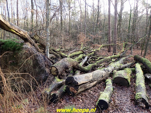 2021-01-14    Hierden-Ermelo     40 Km  (38)