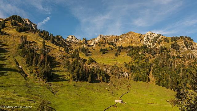 landscape .)2010/6738-20