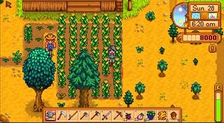 SV_farm