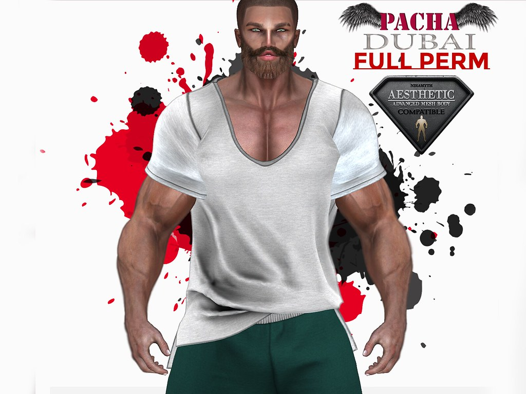 https://marketplace.secondlife.com/p/PACHAAESTHETIC-T-shirt-Full-Perm/21137716