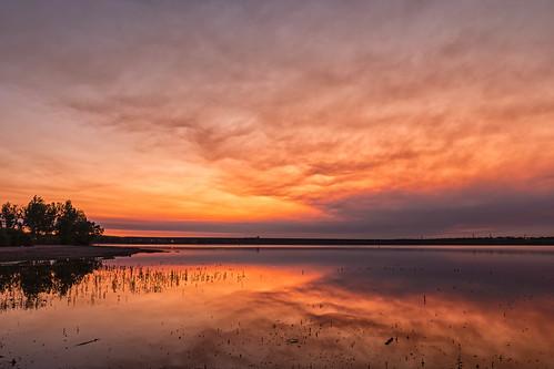 sunrise dawn daybreak clouds trees lake reflections lakechatfield chatfieldlake chatfieldstatepark colorado landscape landscapes
