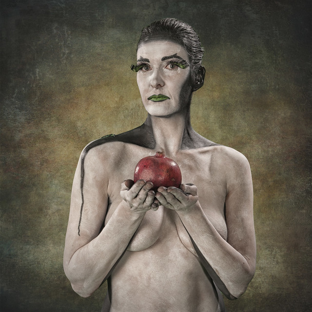 About the Pomegranate (Punica granatum)
