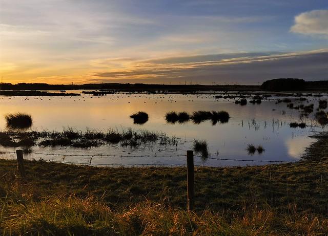 Druridge Dawn - Distant Ducks