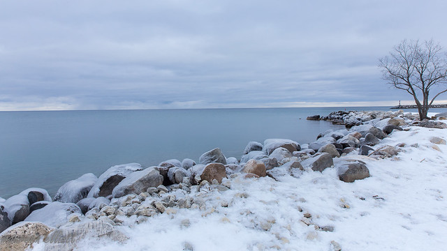 Frosted Shores