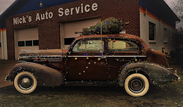Car carrying christmas tree2 copy (2)