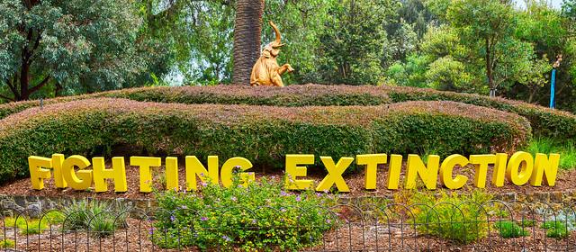Fighting Extinction