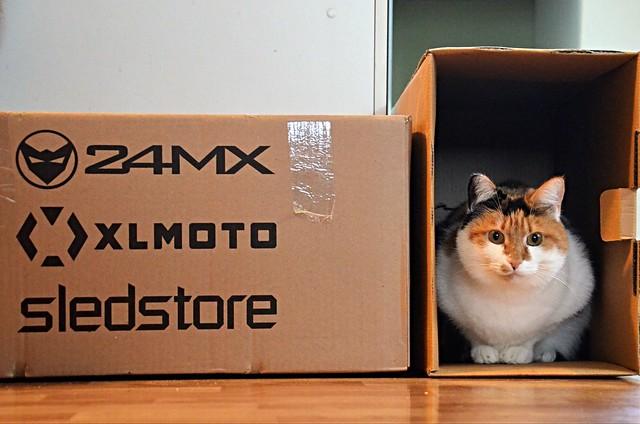 my irresistible new box!!