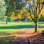 Seasonal Miller Park
