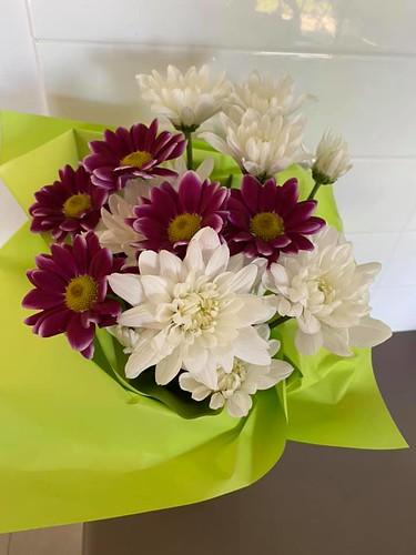 flores embrulhadas