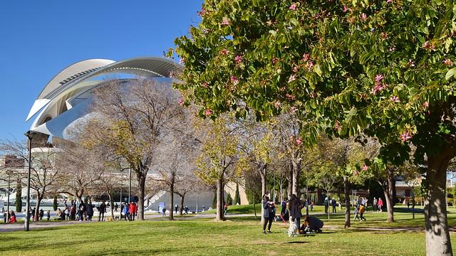 Sunday at Turia Park, Valencia