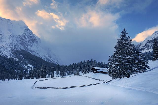 Winter in the farmland