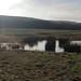 "<p><a href=""https://www.flickr.com/people/113359486@N08/"">Alan Longmuir.</a> posted a photo:</p>  <p><a href=""https://www.flickr.com/photos/113359486@N08/50840884017/"" title=""St Fitticks Community Park,,Aberdeen_jan 21_1115""><img src=""https://live.staticflickr.com/65535/50840884017_f1062df994_m.jpg"" width=""240"" height=""160"" alt=""St Fitticks Community Park,,Aberdeen_jan 21_1115"" /></a></p>"