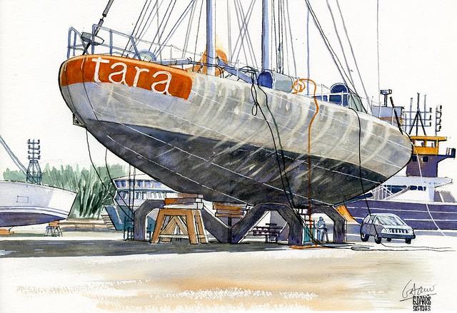Lorient - Tara - 14 01 2021