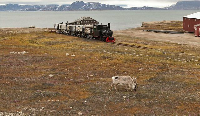 Life In an Arctic Town