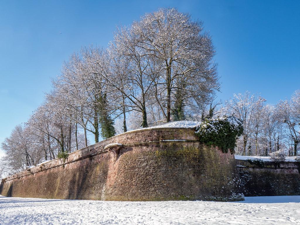 Belle journée d'hiver au Parc de la Citadelle... + ajout 50841104388_b9cd9c4255_b