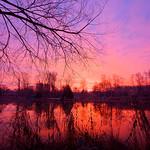 16. Jaanuar 2021 - 8:34 - Ciel de neige à l'étang de Bresles - Oise