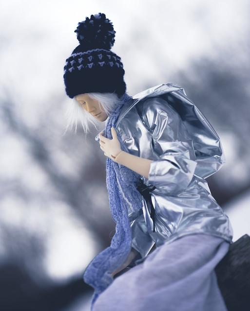 Fulla / Tashan I - silver coat