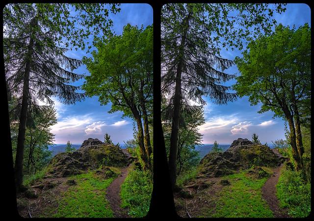 Venetianerstein 3-D / Kreuzblick / Stereoskopie