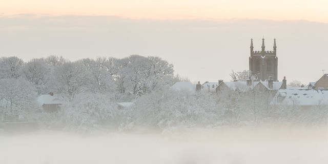 Mist over the park