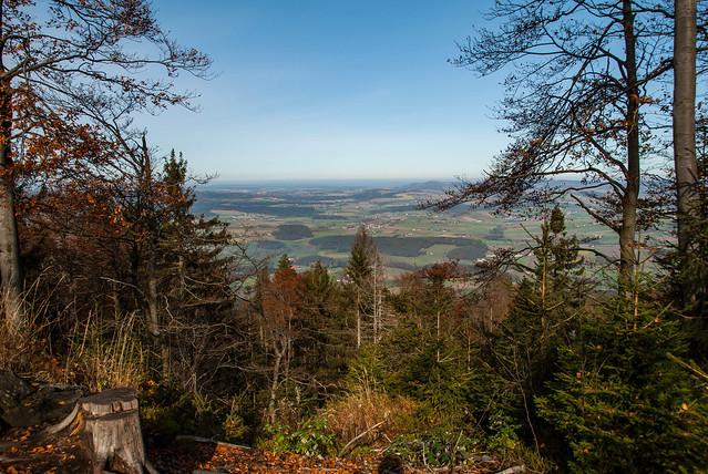 Hiking - Hoher Bogen