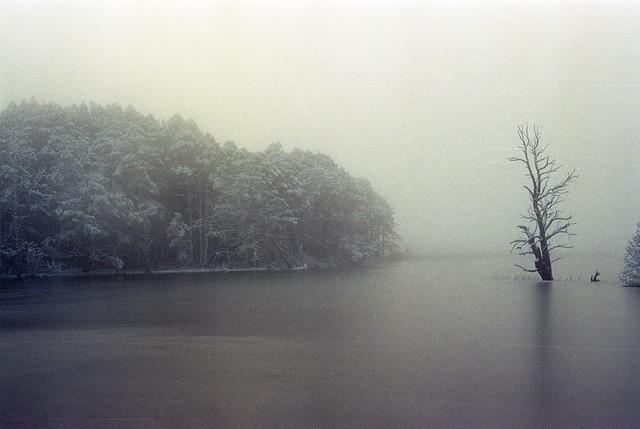 Loch Garten Frozen