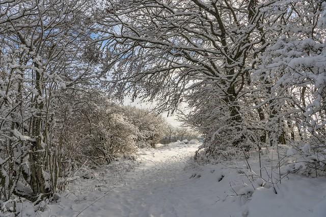*Winterzauber auf der Aarley*