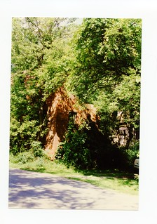2021-01-16. Huffman's Mill 1995 1